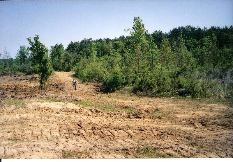 2001-4-land-in-spring-hope-2