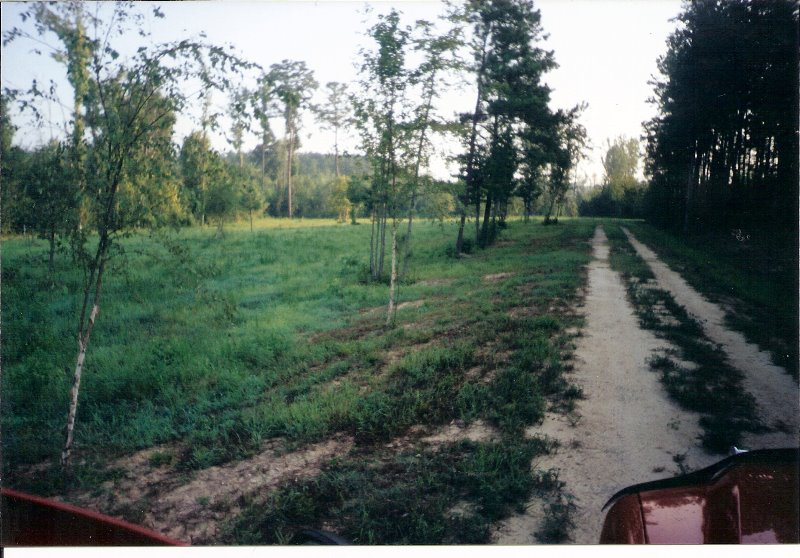 2001-6-land-in-spring-hope-1