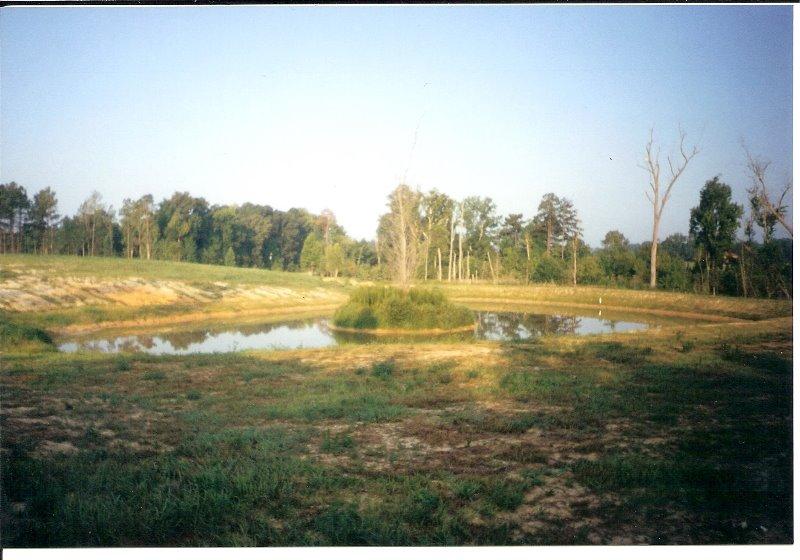 2001-6-land-in-spring-hope-3