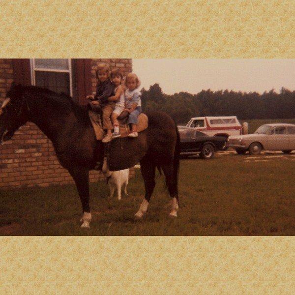 1983holleytjcrystalonbudmymomsoldquarterhorse