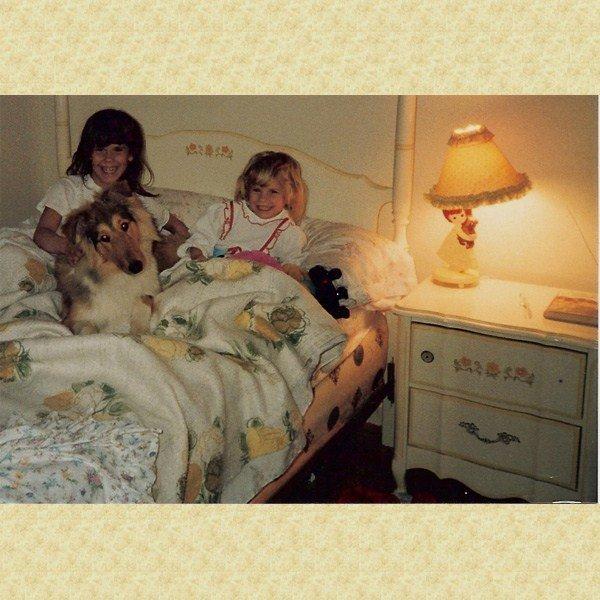 1987holleywendygingerourcollie