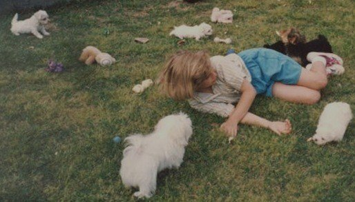 1993junemewith-mymemasmalteseyorkie-puppies