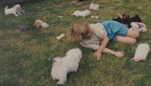 1993junemewith-mymemasmalteseyorkie-puppies
