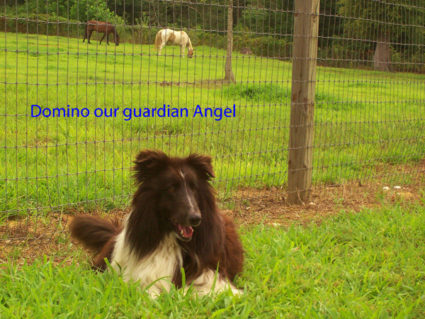 10-our-guardian-angel-july-2006-copy