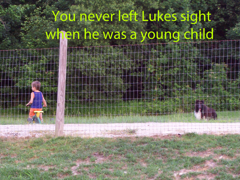 2006-6-28-domino-was-lukes-constant-side-kick-fro-the-time-luke-was-18-months-old-on-the-farm-arrowhead-acres-copy