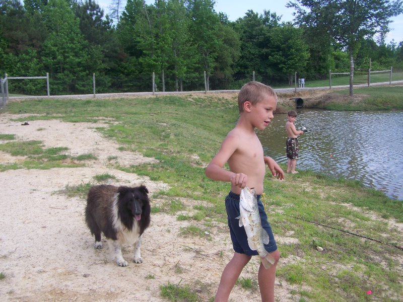 2008-5-18-domino-hanging-out-fishing-at-the-pond-with-scott-arrowhead-acres