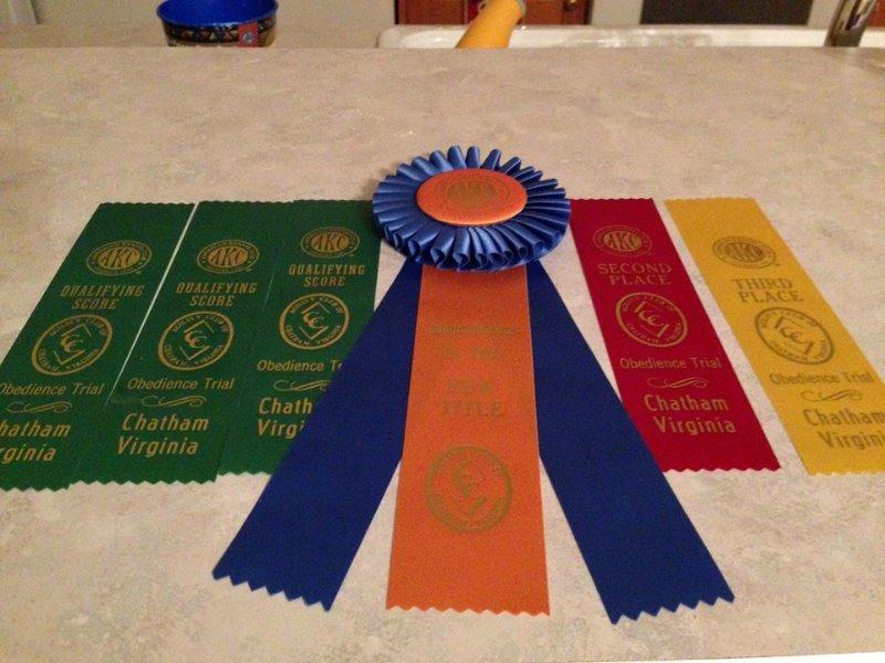 11-4-11-izzy-owmer-elaine-spradlin-shimmer-mochi-ribbons-in-obedience-2
