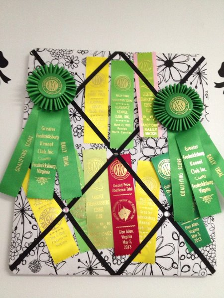 11-4-11-izzy-shimmer-mochi-ribbons-in-obedience-1