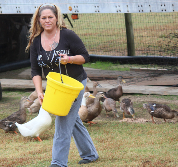 feeding-our-ducks1