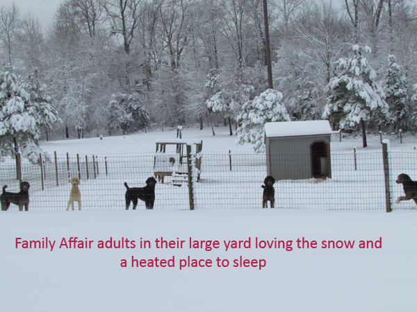 13-our-adults-enjoying-the-snow