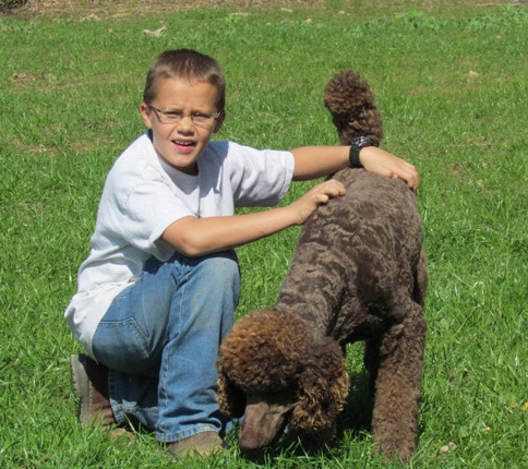 Child Sitting Outside With a Standard Poodle Puppy