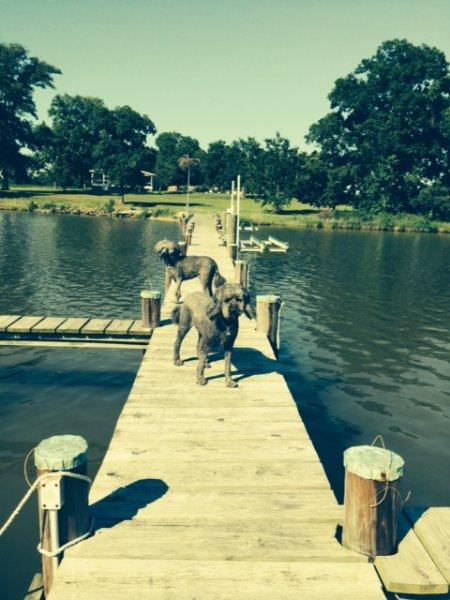 boys-on-dock
