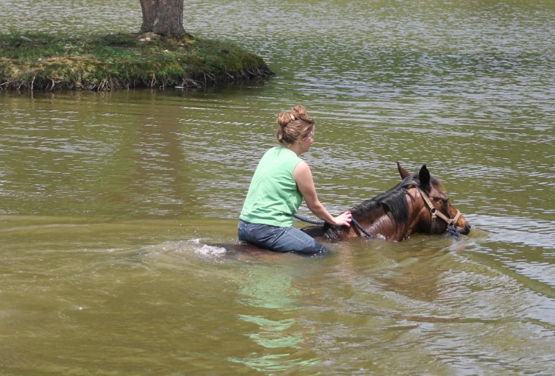 2014-6-14-a-fun-day-with-the-horses-at-aa-15