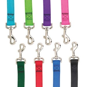 Multicolored Double Layer Dog Leashes
