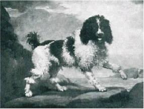 George Stubbs 1724-1803